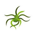 green virus or bacteria molecular biology vector image vector image