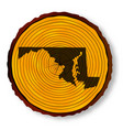 maryland map on timber vector image vector image
