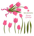 set of hand-drawn elements for bouquet of pink vector image