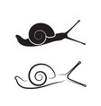 snail on white background reptile animals vector image vector image