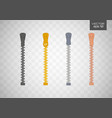 zipper buttoned flat style vector image vector image