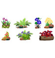 large set colorful flowers on rocks and wood vector image vector image