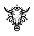 skull a bull on a pattern background vector image vector image