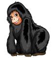black ape vector image