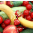 blurred background with fruits vegetables and eco vector image vector image