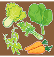 cute Vegetable set vector image vector image
