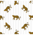 leopard pattern vector image vector image