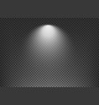 light effect on transparent background template vector image