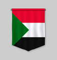 pennant with flag vector image vector image