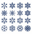 set of snowflakes snowflake texture for vector image vector image