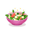 bowl of salad with spinach salmon and egg vector image