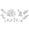 doodle clipart with peacock and feather vector image vector image
