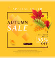 fashion yellow autumn sale vector image vector image