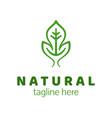 natural product logo design template green leaf vector image vector image