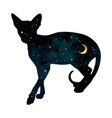 silhouette cat with crescent moon and stars vector image vector image