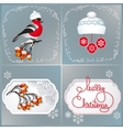 Bullfinch hat rowan branches and handwritten vector image
