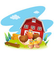 chicken and chicks on the farm vector image vector image