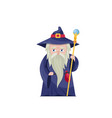 old wizard with magical staff vector image