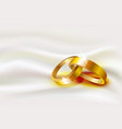 two wedding rings on silk background vector image