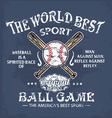 baseball world sport vector image