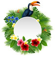 cartoon toucan funny plants middle empty vector image vector image