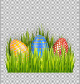easter eggs on green grass decorative element vector image