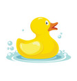 rubber yellow duck bath children toy in water vector image