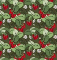 Seamless Colored Fruit Pattern vector image