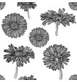 seamless monochrome chamomile pattern vector image