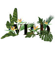 tropical exotic print with slogan for t-shirt vector image vector image