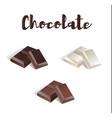 chocolate set vector image