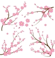 Japanese branch