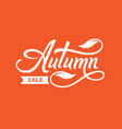 autumn sale hand drawn lettering vector image