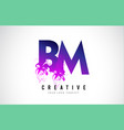 bm b m purple letter logo design with liquid vector image vector image