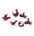 cartoon cute chicken cock rooster chick set vector image vector image