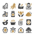 ginseng icon set vector image vector image