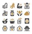 ginseng icon set vector image
