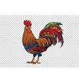 Red rooster the symbol of 2017 vector image vector image