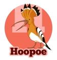 ABC Cartoon Hoopoe vector image vector image