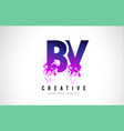 bv b v purple letter logo design with liquid vector image vector image
