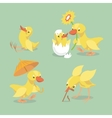 Cute chicken and duckling