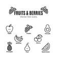 fruit and berries icon set vegan natural bio vector image