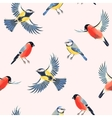 Seamless bullfinch and tomtit vector image
