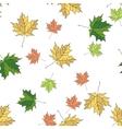 seamless pattern autumn vector image vector image
