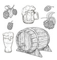 sketches of hop plant wood barrel and beer mugs vector image vector image