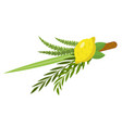 Sukkot set of herbs and spices of the etrog lulav vector image