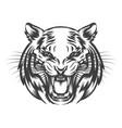 roaring tiger face vector image