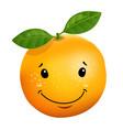 3d stile of orange cartoon character vector image vector image
