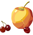 apple and cherry vector image vector image