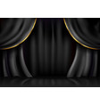 background curtain stage vector image